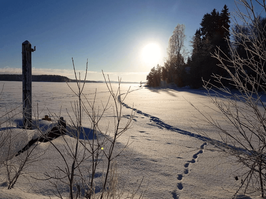 Pihlajavesi talvella